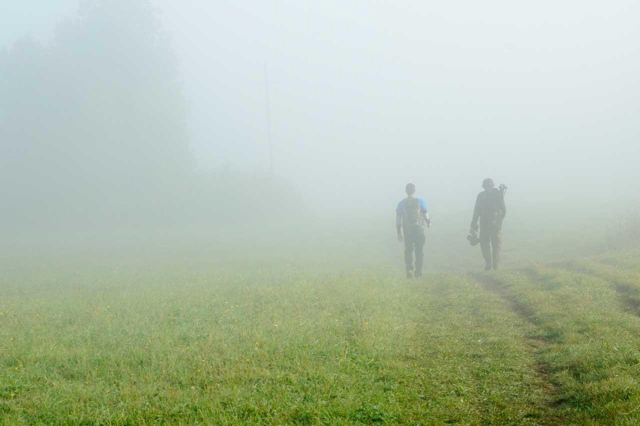 Inversion hunters